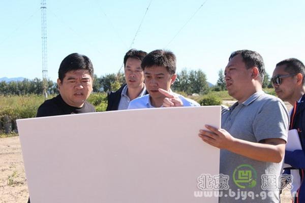 延庆区委常委、副区长谢文征到沈家营镇调研土地平整工程